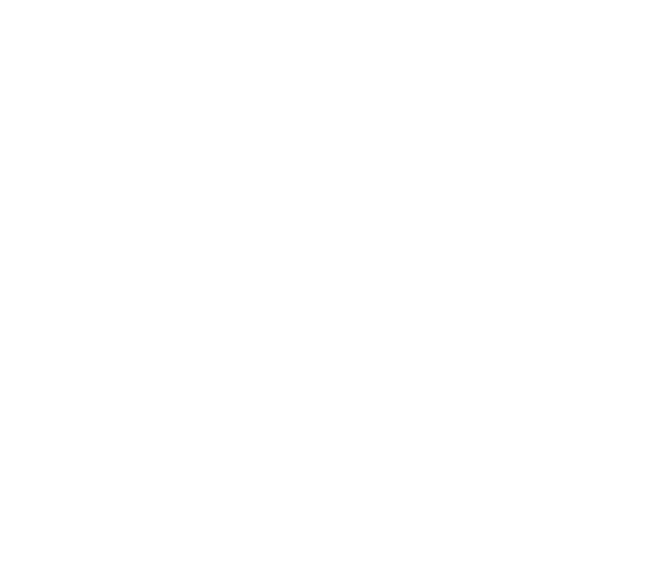 Secure payments provided by Mollie